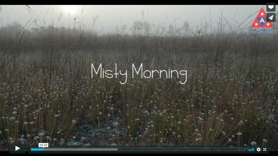 MistyMorning_screenshot (1)